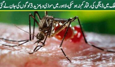The speed of dengue in the country